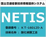 NETIS-K-160125-A