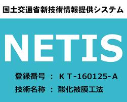 国交省NETIS